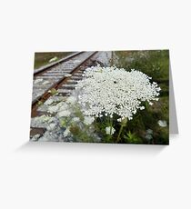 Queen Anne's Lace by the Tracks Greeting Card