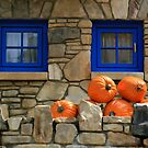 Blue Windows and Pumpkins by Amy Jackson