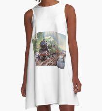 Paddlebox at Surbiton. A-Line Dress