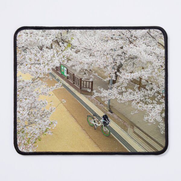 Cherry Blossoms at Seoul Forest Park Mouse Pad