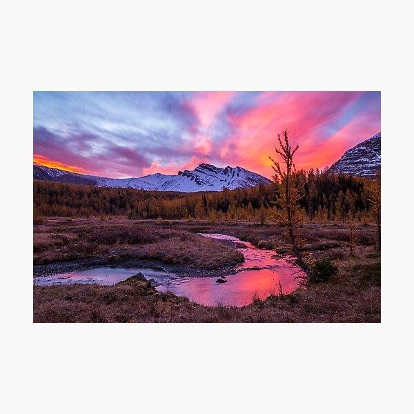 Fall Landscape Assiniboine Print Mountain Print Canada Travel Nature Landscape Canadian Rockies Mountain Wall Art Photography Prints