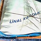 The Sails Of Unal Kaptan by taiche