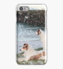 beach view with two dogs iPhone Case/Skin