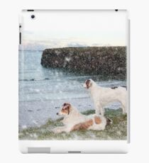 beach view with two dogs iPad Case/Skin