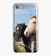 beautiful pair of Irish horses iPhone Case/Skin