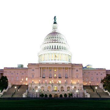 US Capitol by wheresbolivia