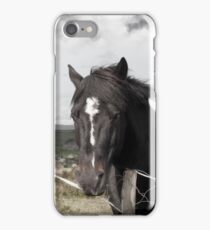 black Irish horse and ancient round tower iPhone Case/Skin