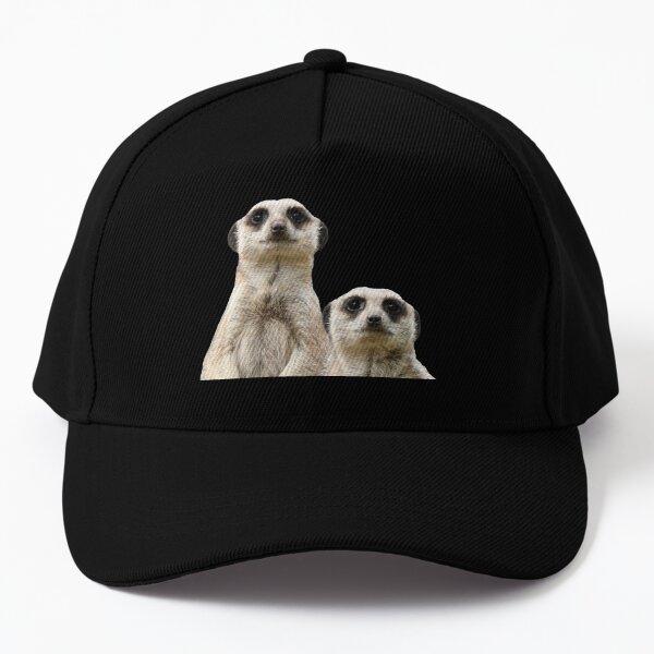 Meerkats 4 Baseball Cap