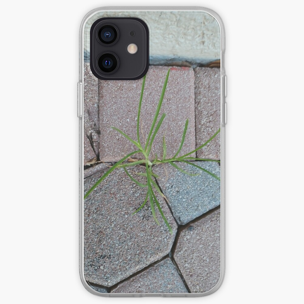 Art Dry iPhone Case