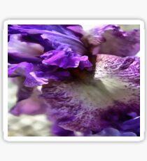Purple, Violet and Mauve Iris Abstract Sticker