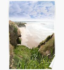 flora view from the top of the cliffs in Ballybunion Poster