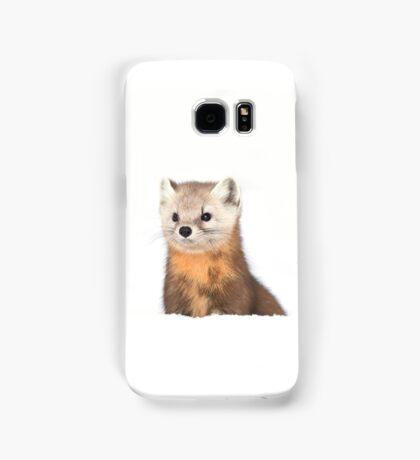 Pine Marten - Algonquin Park Samsung Galaxy Case/Skin