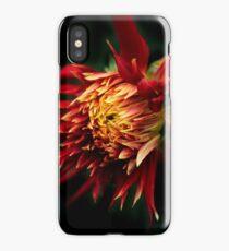 Flaming Dahlia iPhone Case/Skin