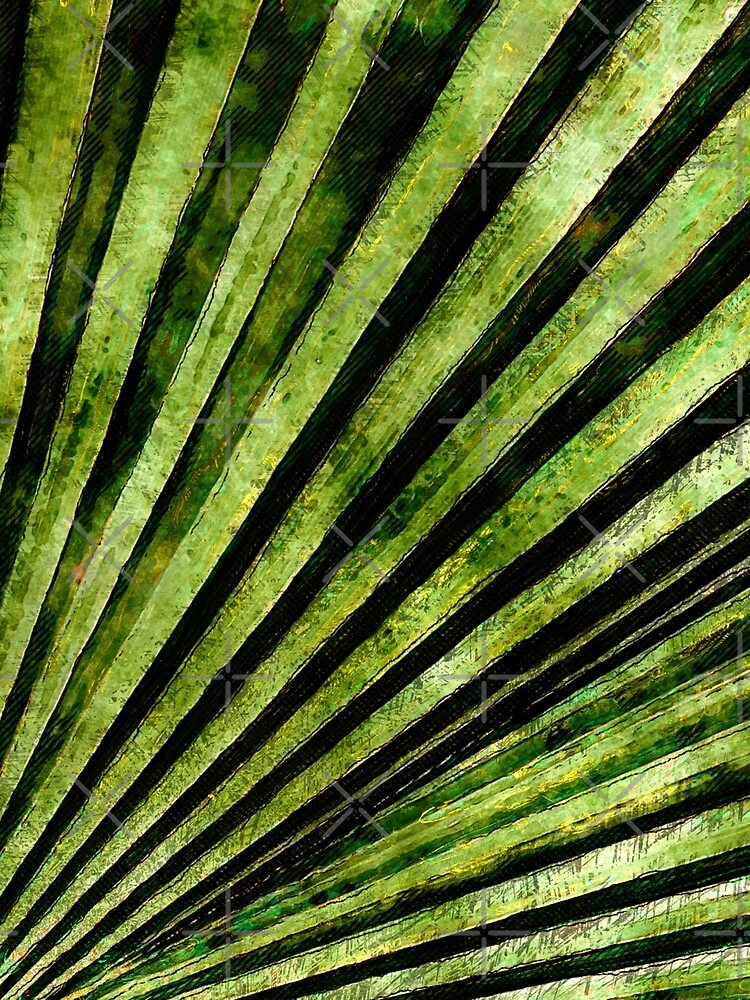 Green Palm Tree Frond by perkinsdesigns