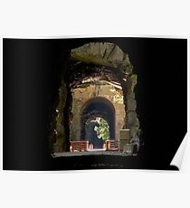 Othello Tunnels in Hope British Columbia Canada Poster