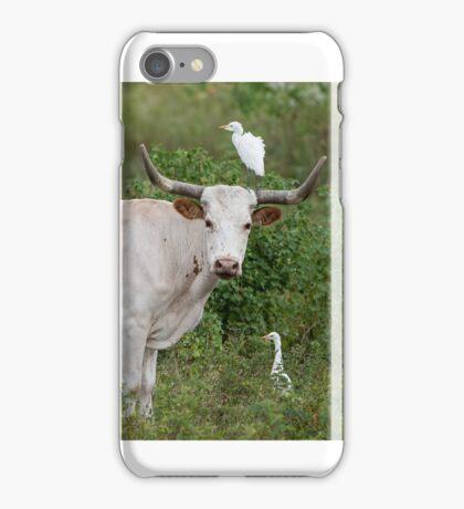 Bovine and Bird Buddies iPhone Case/Skin