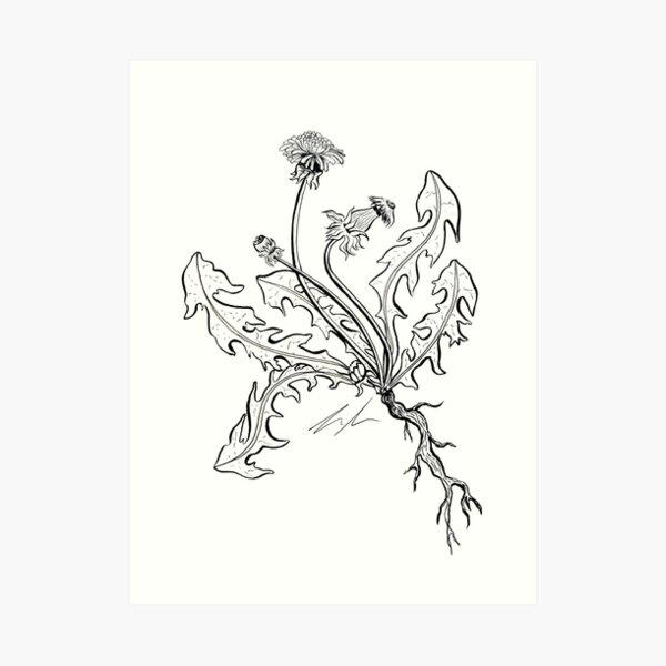 Blackberry Branch Art Print