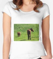 caballos  Women's Fitted Scoop T-Shirt
