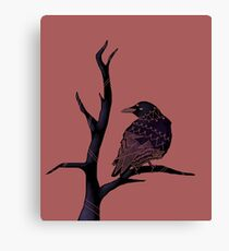 Three-Eyed Crow on a Branch  Canvas Print