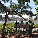 Vest Pocket Park - Brooklyn by John Schneider