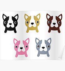 Adorable doggie set. Vector Illustration Poster