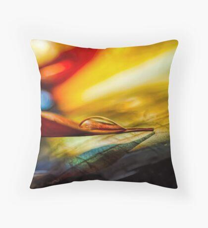 Agate Point Throw Pillow
