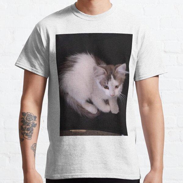 Kitten in a Chair Classic T-Shirt