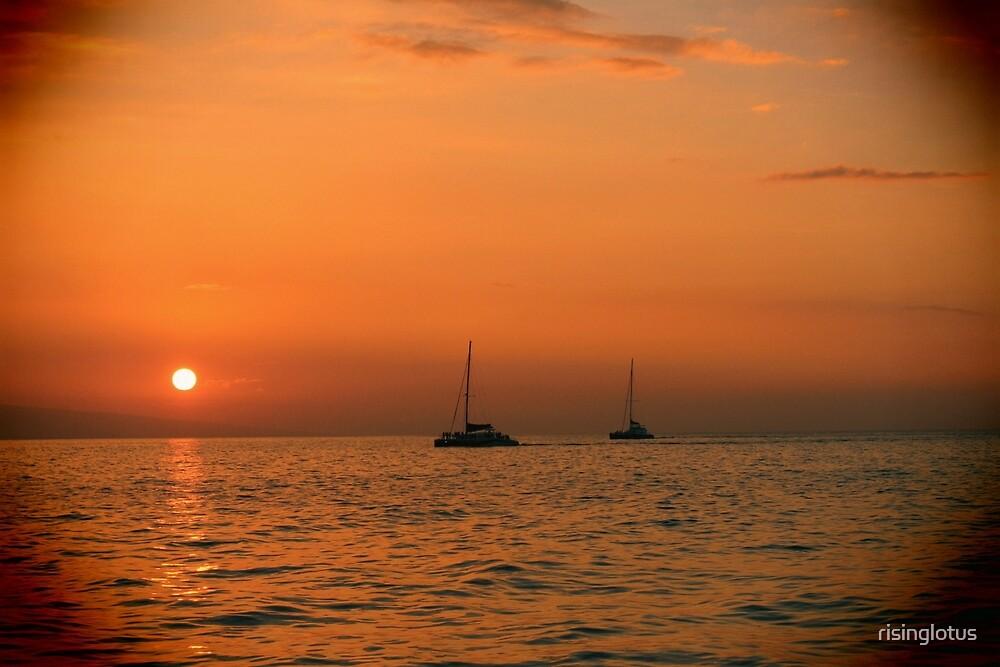 Maui Sail Boats by risinglotus