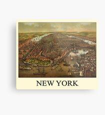 Vintage Historic New York Map 1873 Metal Print