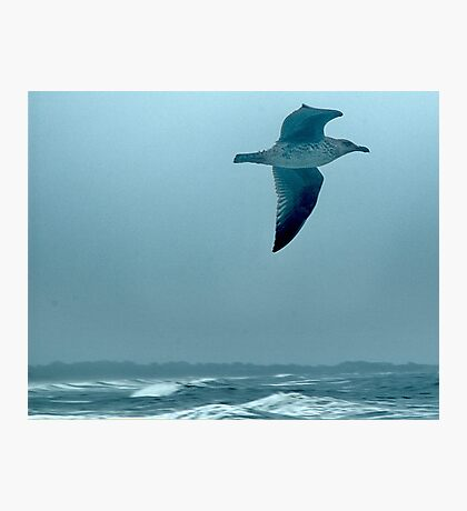 Above the Waves Photographic Print