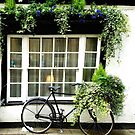 Cottage Bicycle by L. W.