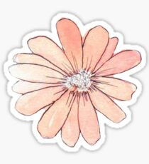 Peach Watercolor Sticker