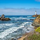 View from Pigeon Point Bluffs by James Watkins