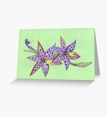 Australian native orchid Greeting Card