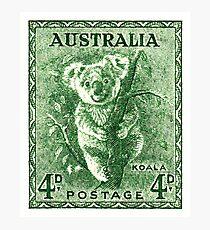 1940 Australia Koala Postage Stamp Photographic Print