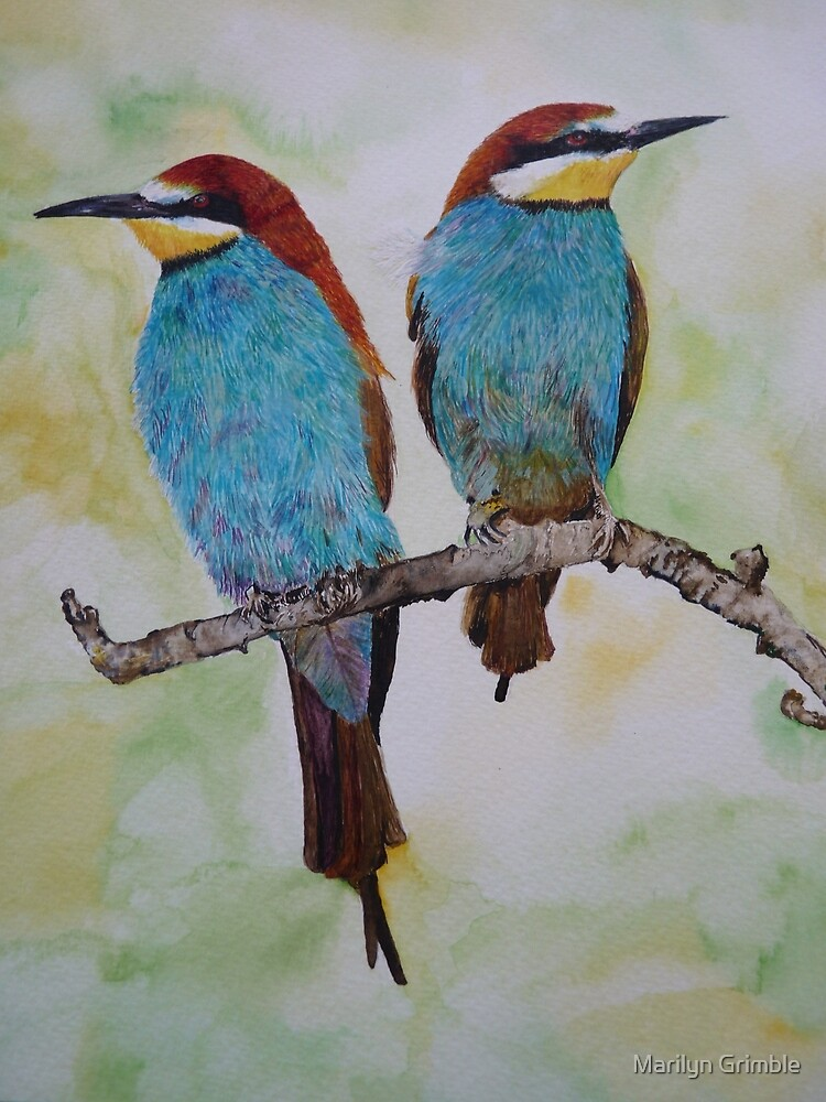 BEE EATERS - given as a 60th birthday present by Marilyn Grimble