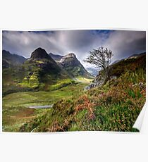 Three Sisters of Glencoe  Poster