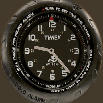 Shenmue Timex Watch Shenmue by hoogafanter