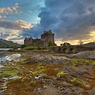 rugged beauty by James Anderson