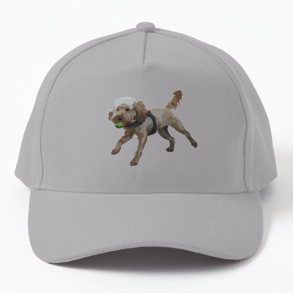 Dog with ball in mouth Baseball Cap