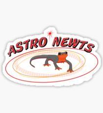 Astro Newts Sticker