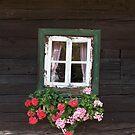 Old Farmhouse Window by Christine  Wilson
