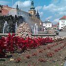 Banska Bystrica Square Slovakia by DES PALMER