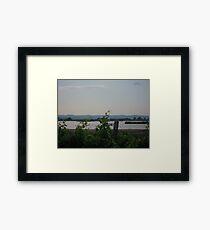 Vineyard #4 Framed Print