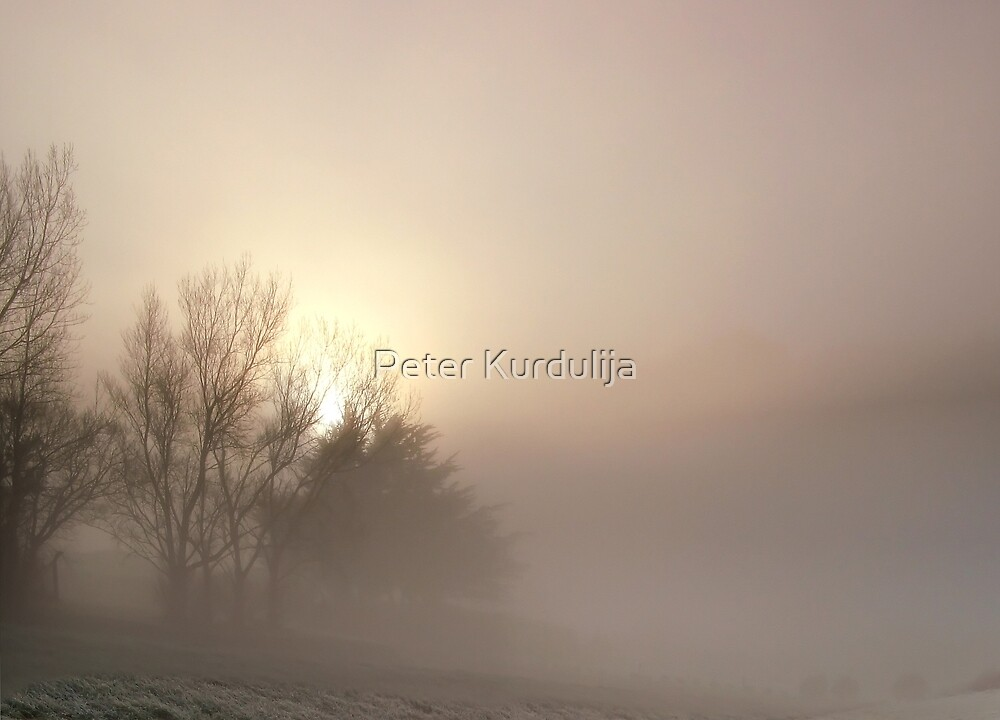 Winter Solstice by Peter Kurdulija