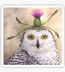 Cleveland, the snowy owl with thistle Sticker