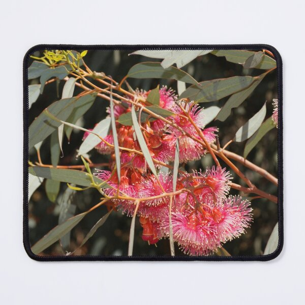 Pink Flowering Gum  by Avril Thomas, South Australian artist  Mouse Pad