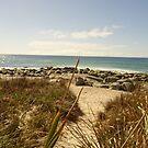 A Walk to the Sea by Mindseyephoto