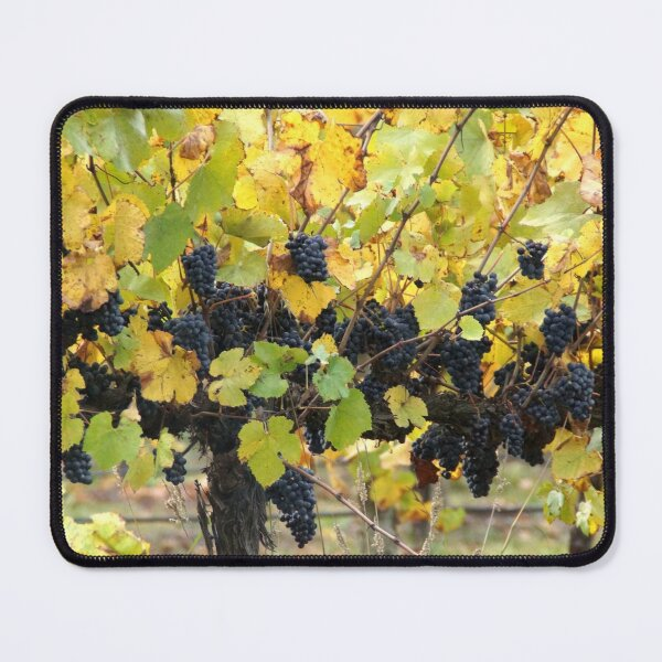Fruity - Magpie Springs - Adelaide Hills Wine Region - Fleurieu Peninsula by South Australian artist Avril Thomas Mouse Pad