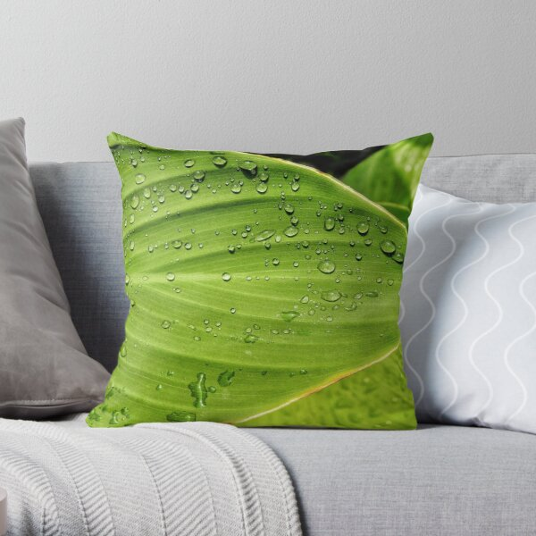 Calla Lily Leaf With Waterdrops Throw Pillow